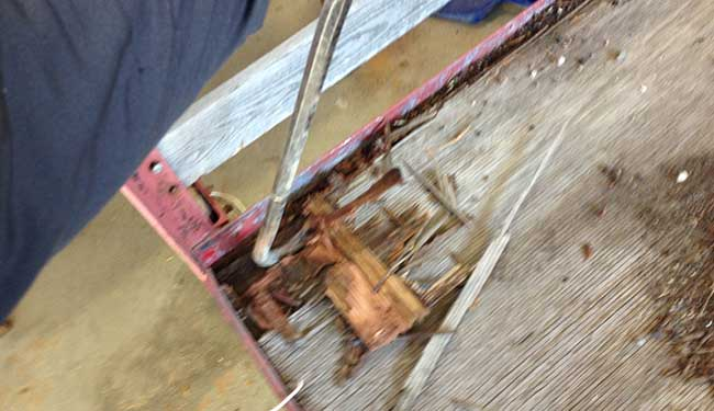 removing-old-plywood-from-trailer
