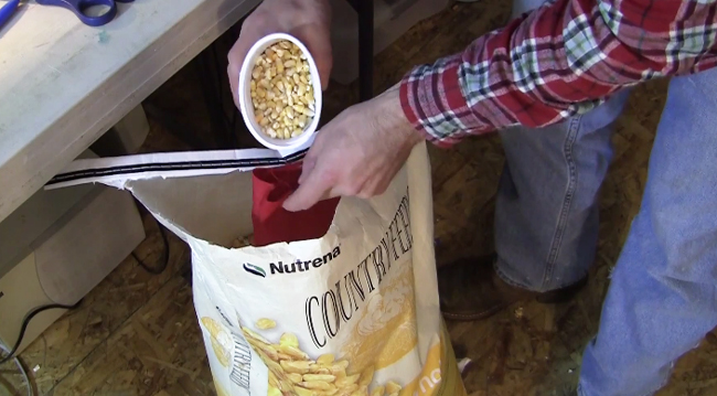 corn-feed-for-cornhole-bags