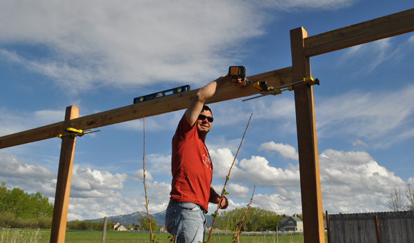 Cedar Fence Tutorial