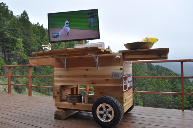 Tailgate bar with TV
