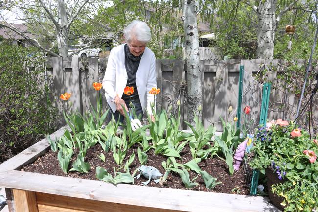 marge-sage-gardeners