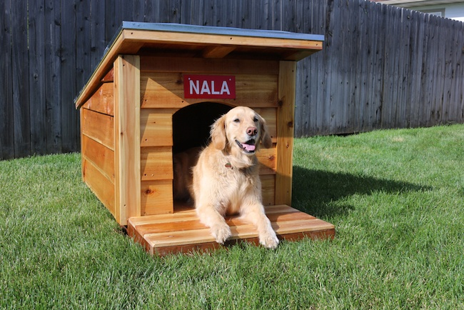 how to make a doghouse